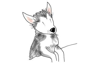 husky puppy cartoon