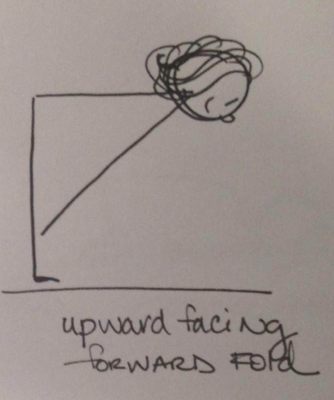 upward facing fold
