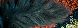 Grendel tail