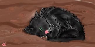 lil black cat curled up1
