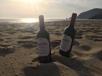 Wine bottles on the beach at sunset